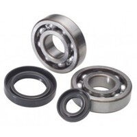 KAWASAKI KX125 1998-2008 > CRANKSHAFT BEARING & SEAL KIT