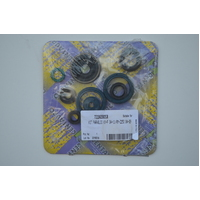 OIL SEAL SET